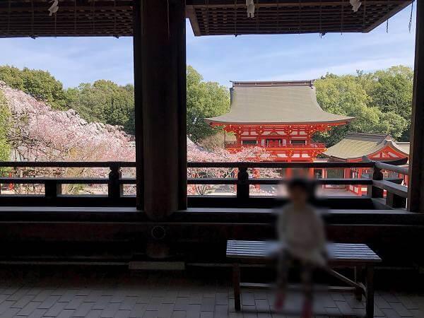 滋賀県大津市へ子連れ旅行「近江神宮」
